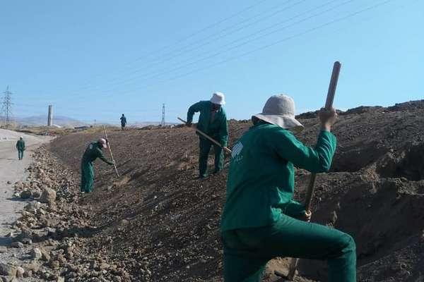 ادامه طرح توسعه فضای سبز در کمربند سبز شرق