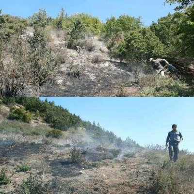 مهار آتش سوزی درمنطقه رزان لشکنار کجور