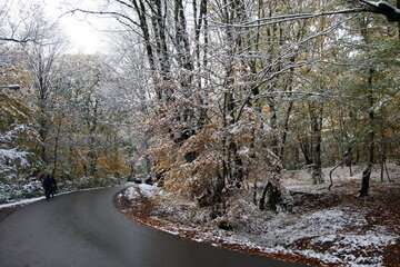 انتظار بارش برف برای ارتفاعات البرز و شمال غرب کشور