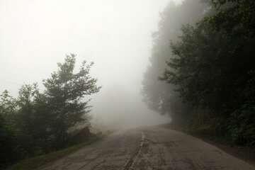 جاده فیروزکوه بارانی و چالوس با مه گرفتگی همراه است