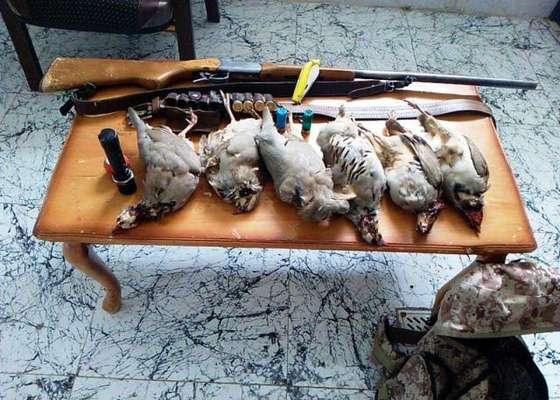 دستگیری متخلف شکار پرندگان در شهرستان فریدونشهر
