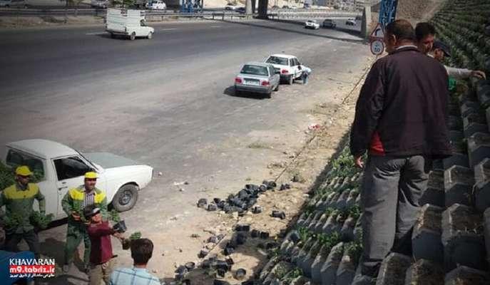 گلکاری فلاور باکس های ضلع شمالی تفرجگاه ائل باغی (حاشیه ی اتوبان شهید کسائی)