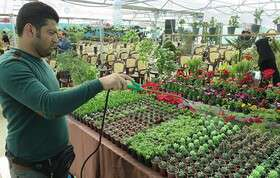 بستر جذب فارغ التحصیلان کشاورزی فراهم شود