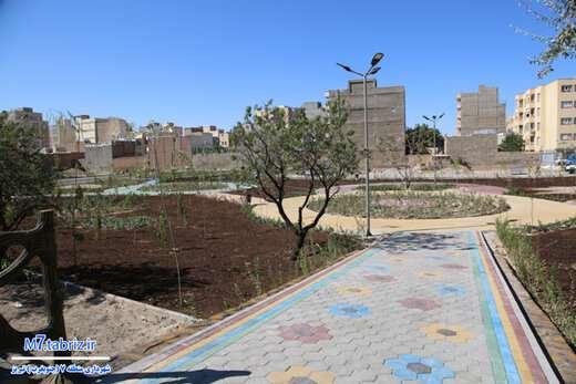 پارک محلهای یاسمن امروز افتتاح میشود/ کلنگزنی احیای باغات لاله