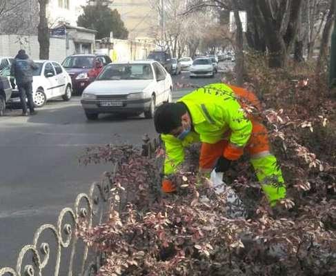 پاکسازی رفوژهای سطح حوزه از مواد خطرساز زیست محیطی