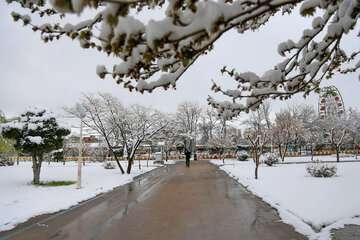 پیشبینی بارش برف و باران در ۱۲ استان