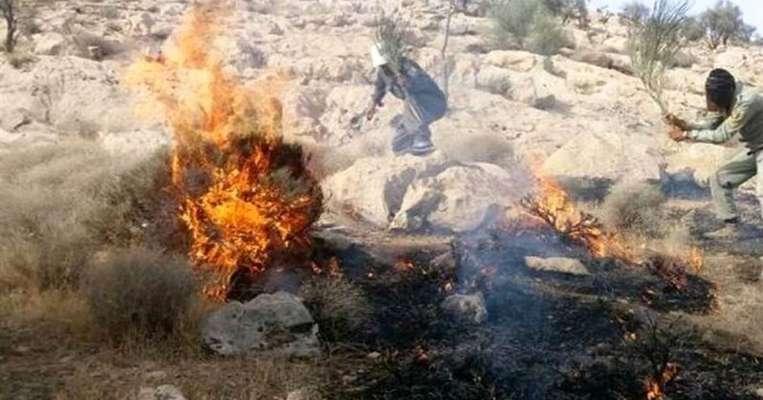 انسجام محیط زیست و منابع طبیعی در مقابله با آتش