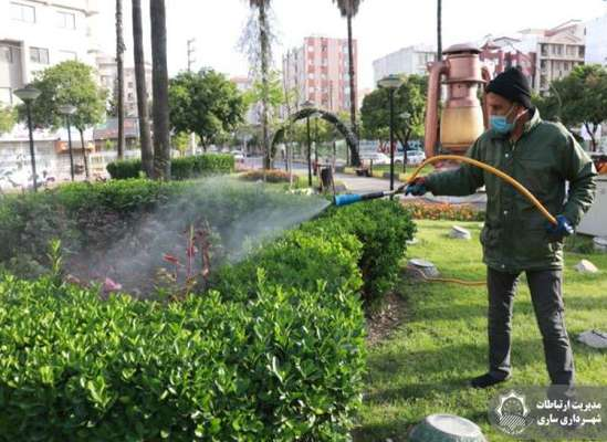 سمپاشی فصلی فضای سبز شهری علیه انواع آفت ها