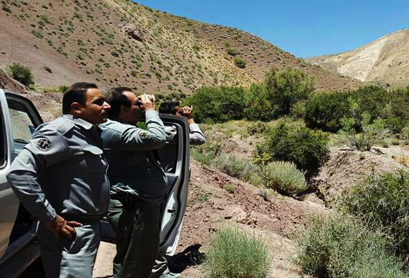 پرونده احراز شهادت محیطبانان تعیین تکلیف میشود