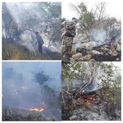 آتش منطقه حفاظت شده کوه دیل گچساران مهار شد