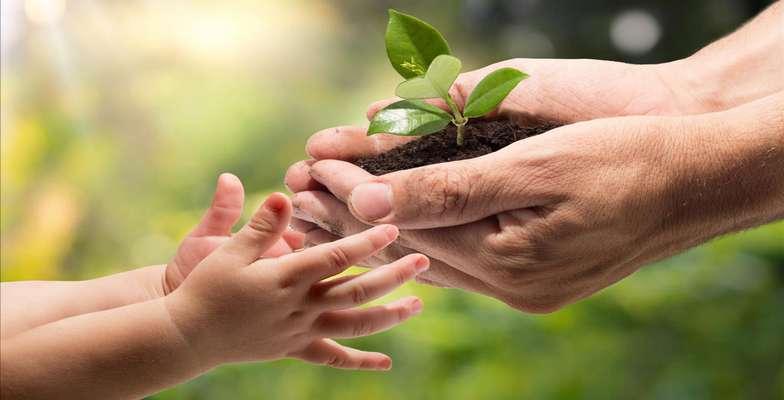 احترام به محیطزیست باید از کودکی آموزش داده شود