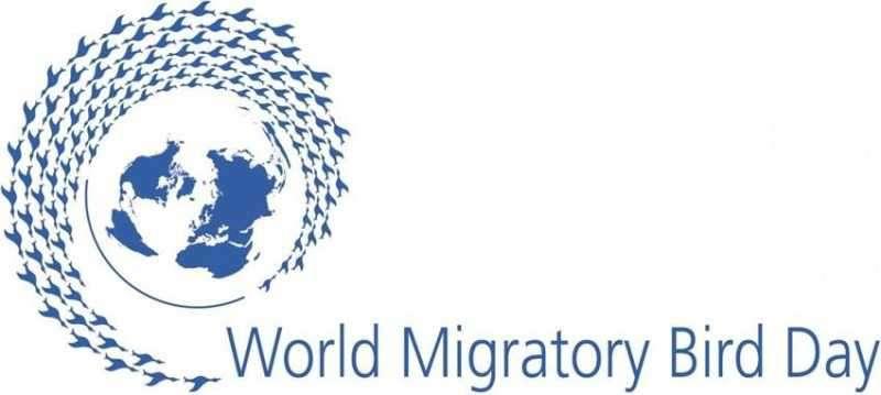 پرندگان مهاجر، پیوند دهنده انسانها و طبیعت