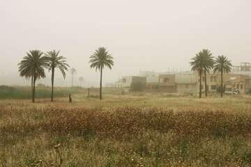 وقوع پدیده گرد و خاک در زابل، خوزستان، ایلام و بوشهر