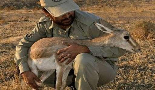 یادداشت دکتر ایرج حشمتی به مناسبت روز ملی محیط بان،برای نجات حیات وحش لطفا شما هم محیطبان شوید