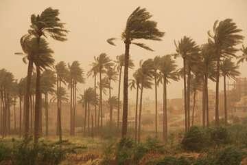 نوار شرقی کشور تا روز یکشنبه با خیزش گرد و خاک مواجه است