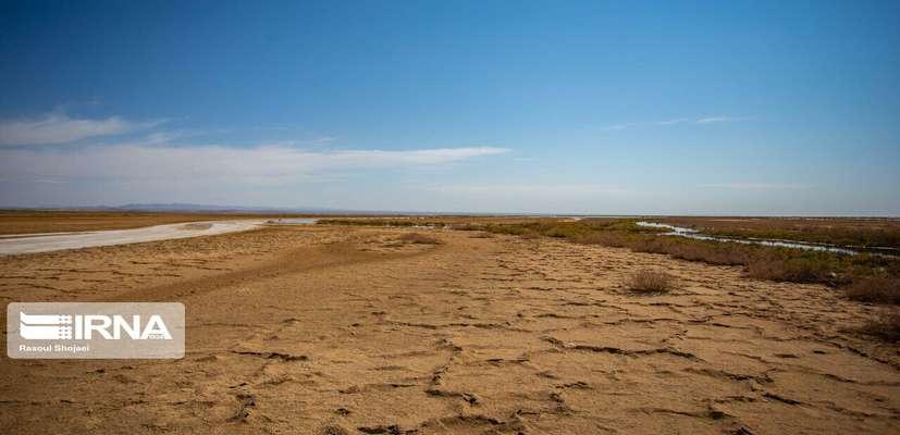 احیای تالاب گاوخونی مستلزم جداسازی حقابه محیط زیست و کشاورزی است
