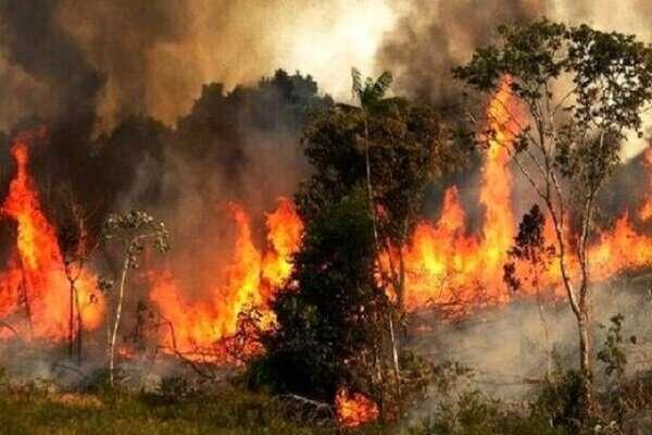 بیش از 1500 هکتار از اراضی چهارگانه گرفتار آتش شدند