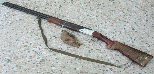 یک متخلف شکار وصید در کاشان دستگیر شد