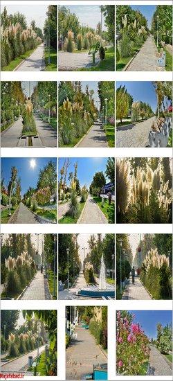 کارت پستالهای تابستانی / چهارباغ نجف آباد