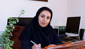 ضرورت مرمت و بهسازی بافت تاریخی کرمان