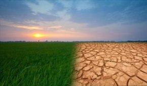 ایران ۱.۳ درجه سلسیوس گرمتر شد