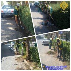 پاکسازی و جمع آوری خاکهای اضافی فضای سبز خیابان حافظ ابرو