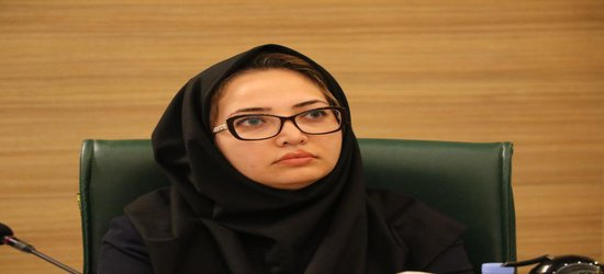 دهقانی: هویت بصری شیراز با ارائه طرح جامع گردشگری شناسایی میشود