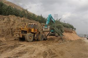 جابجایی و کاشت درختان مسیر اجرای پروژه بلوار ۲۴ متری آبیدر به روایت تصویر