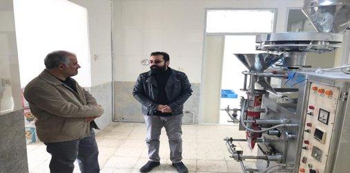 بازدید رئیس شورای اسلامی شهر از واحد بسته بندی خشکبار با نام تجاری نارون