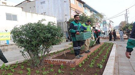 گل کاری مبلمان شهری روبروی مخابرات مرکزی شهر