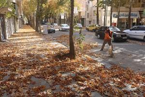 جمع آوری برگهای پاییزی خیابانها و معابر اصلی توسط پاکبانان خدوم و زحمتکش شهرداری منطقه یک سنندج