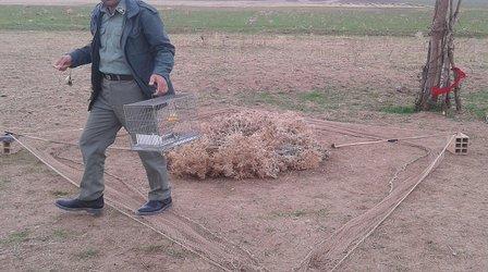 دستگیری ۲ اکیپ صیاد متخلف در ثلاث باباجانی