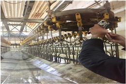 پلمب و تعطیلی یک واحد کشتارگاه صنعتی طیور با حکم قضایی در شهرستان ری