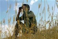بخشش یا قصاص؛ پایان «محیطبان همدانی» چه خواهد شد؟