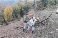 رفع تصرف ۳۰۰۰مترمربع از اراضی منطقه حفاظت شده لیسار